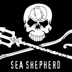 sea_shepherd_flag